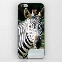 striped iPhone & iPod Skins featuring Striped by maisie ong