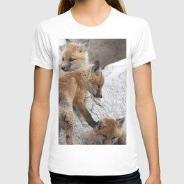 Watercolor Fox, Red Fox 18, Union Reservoir, Boulder T-shirt