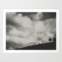 Little tree Art Print