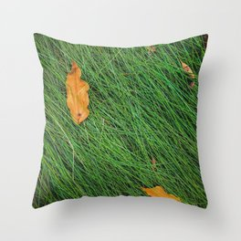 green grass field background with dry brown leaves Throw Pillow
