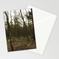 Sun Glimmer Stationery Cards