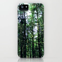 Vivid Tall Tall Trees iPhone Case