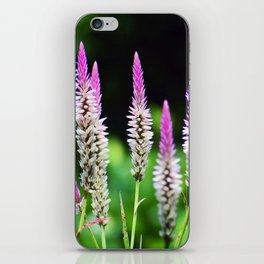 Hong Kong Wildflower Display iPhone Skin