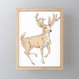 Antler Deer Illustration Framed Mini Art Print