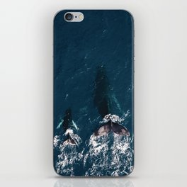 Ocean Family Whales iPhone Skin