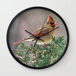 Waiting for Christmas Cardinal Wall Clock