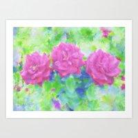 Roses Three Art Print