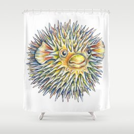 Puffer fish -  Fugu fish Shower Curtain