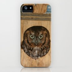 Hibou means owl Slim Case iPhone (5, 5s)