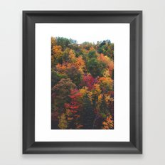 Spectrum of Fall Framed Art Print