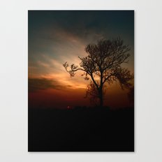Colourful Moments Canvas Print
