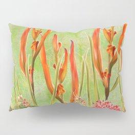 Tropical Floral Malaysian Border Print Pillow Sham