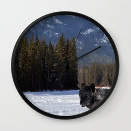 """""""Banff Wolf in Winter with Mt Cascade"""" Wall Clock"""