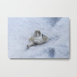 Portrait of polar bear cub practicing yoga on the snow. Metal Print