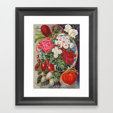 Antique seed mix Framed Art Print