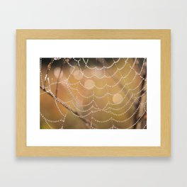 Spider web dew drops Framed Art Print