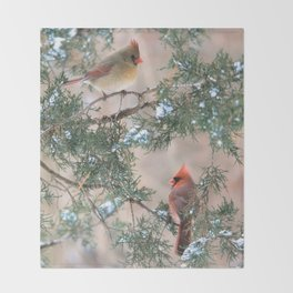 Winter Pair Cardinals (v) Throw Blanket
