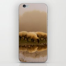 Foggy Sheep iPhone Skin