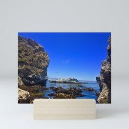 Bird Rock Beach Mini Art Print