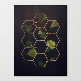 Bees in Space Canvas Print
