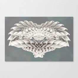 Feathers of Ivory Canvas Print