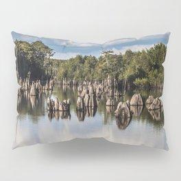 Dead Lakes Florida  Pillow Sham