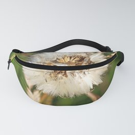 beauty faded thistle Fanny Pack