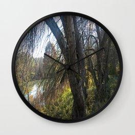 trees in the autumn sun Wall Clock