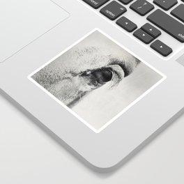 HorSe (V2 grey) Sticker