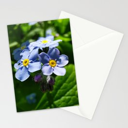 Forget-Me-Nots Stationery Cards