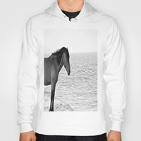 pony Hoodies featuring Assateague Pony by Biff Rendar
