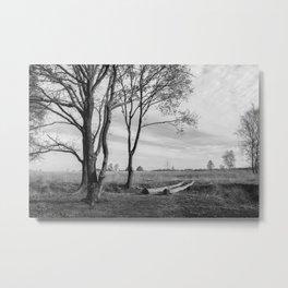 Peaceful Countryside Metal Print