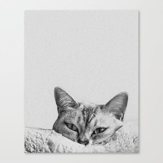 Minimalist grey cat Canvas Print