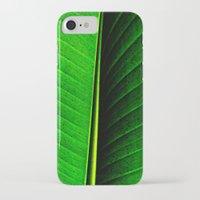 leaf iPhone & iPod Cases featuring Leaf by Melanie Ann