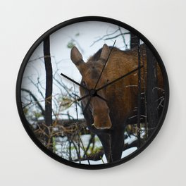 Canadian stare down Wall Clock