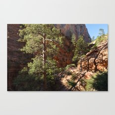 Heirarchy (Zion National Park, Utah) Canvas Print