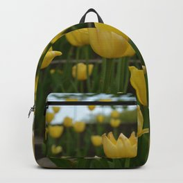 Grouping of Yellow Tulips Backpack