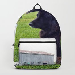 Country Dog Backpack
