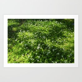 Woodland Carpet Art Print