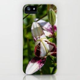 praying lily iPhone Case