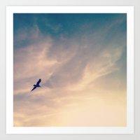 Flying Solo Art Print
