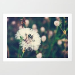Lazy Summer Art Print