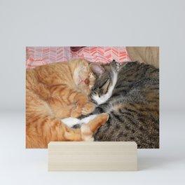 Nap Buddies Mini Art Print