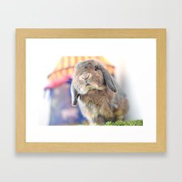 Bunny with circus tent Framed Art Print