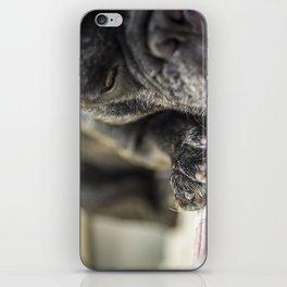 Os Patudos 2 - French Bulldog iPhone Skin