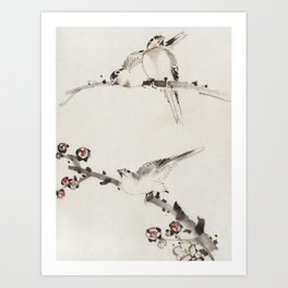 Three Birds Perched on Branches One with Blossoms Art Print