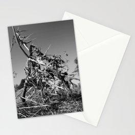 Tough Exterior Stationery Cards