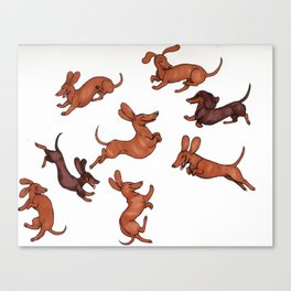Wiener Doggies Canvas Print