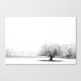 The Winter Storm Canvas Print