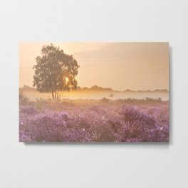 I - Fog over blooming heather near Hilversum, The Netherlands at sunrise Metal Print